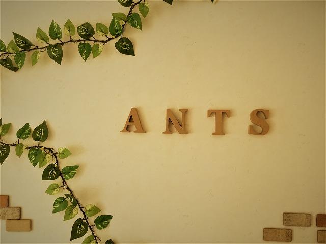 【Ants】IMG_0014